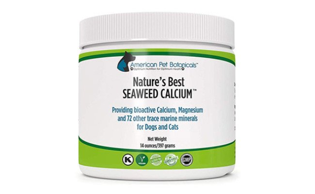 American Pet Botanicals Seaweed Calcium for Dogs
