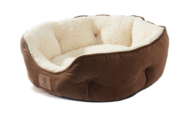 Asvin Small Dog Bed