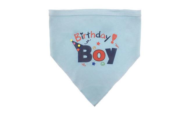 BINGPET Dog Birthday Bandana