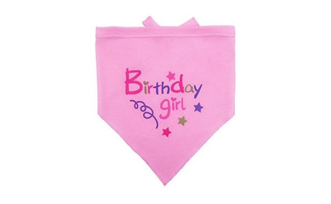 BINGPET Dog Birthday Bandana Pink