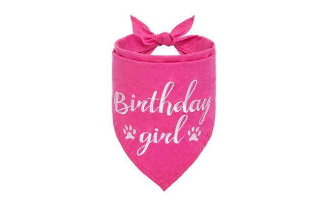 BINGPET Dog Birthday Girl Bandana
