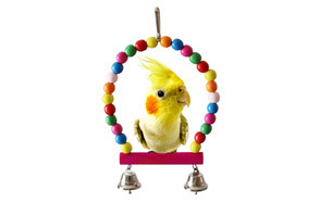 BWOGUE Bird Parrot Toys