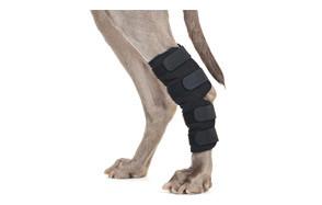 Back on Track Therapeutic Dog Rear Leg Brace