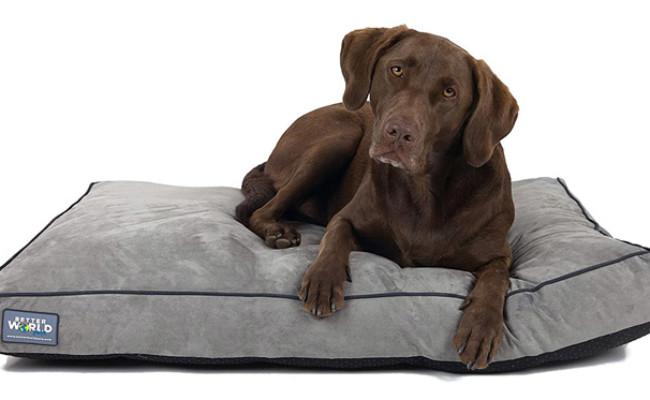 Better World Pets Orthopedic Waterproof Dog Bed