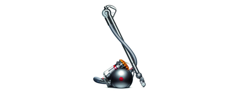 The Best Dyson Pet Vacuums Review In 2019 My Pet Needs