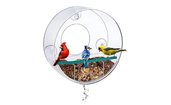 Birdious Circular Window Bird Feeder