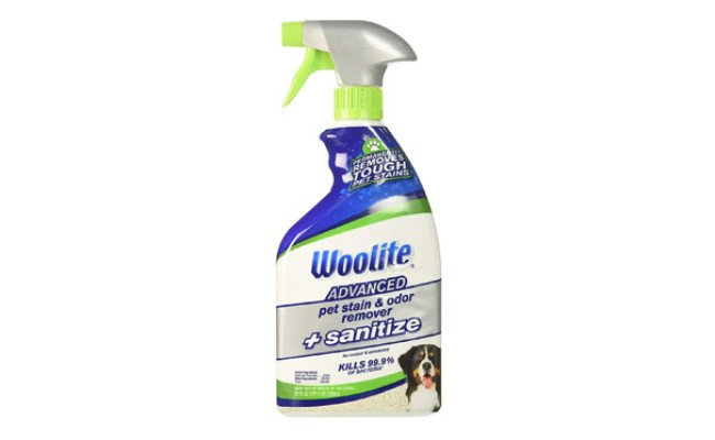 Bissell Woolite Advanced Pet Stain Remover