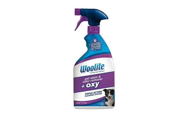 Bissell Woolite Pet Stain & Odor Remover