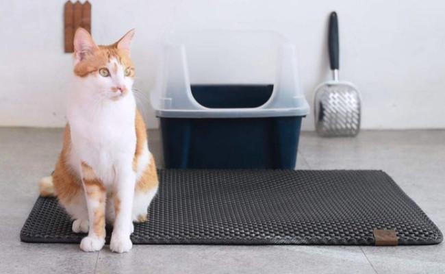 BlackHole Cat Litter Mat