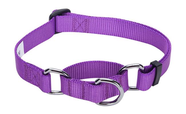 Blueberry Pet Training Martingale Dog Collars