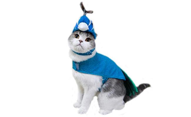 Bro'Bear Pet Peacock Costume with Hat