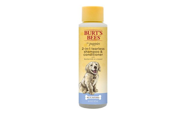 Burt's Bees 2 in 1 Shampoo and conditioner