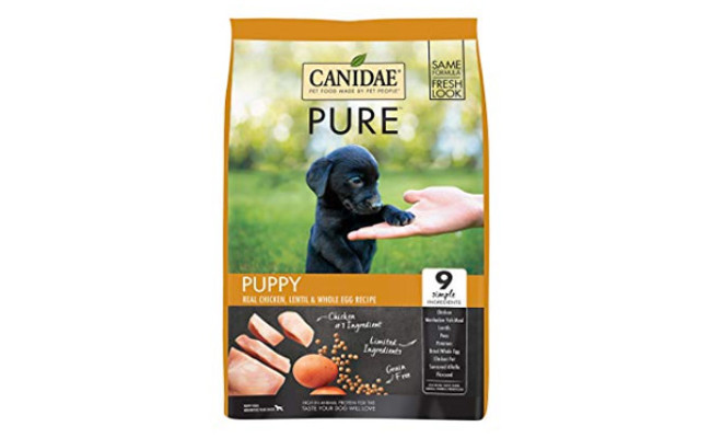 CANIDAE PURE Grain Free Premium Dry Dog Food