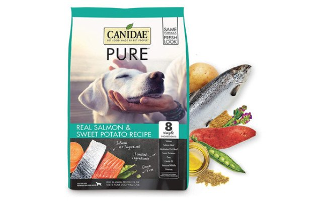 CANIDAE PURE Sea Diet Fresh Salmon Dry Dog Food