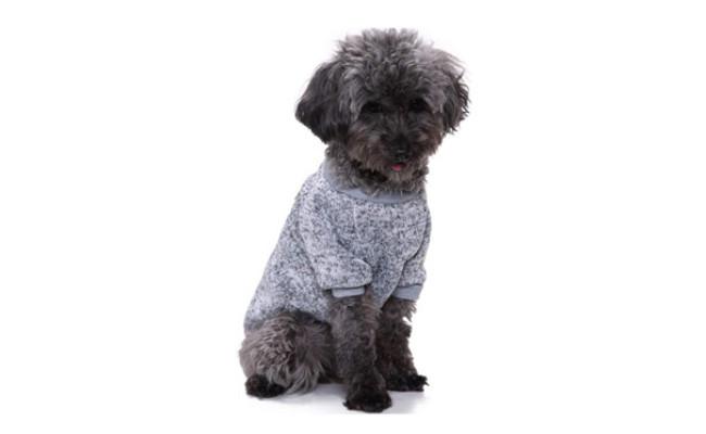 CHBORLESS Dog Classic Knitwear Sweater Warm