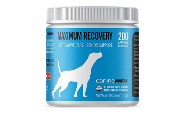 Canine Matrix Supplement for Older Dogs
