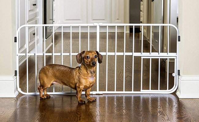 Carlson Pet Products Expandable Gate for Dogs