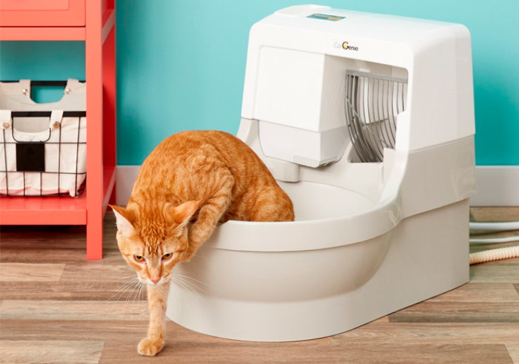Cat Genie Self Flushing Cat Box