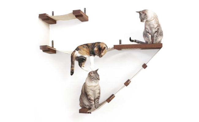 CatastrophiCreations cat hammock