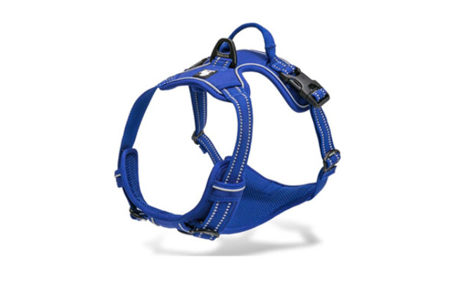 Chai's Choice Dog Harnesses for Running