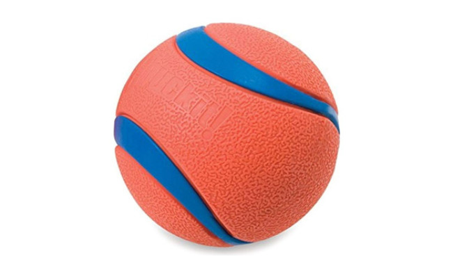 Chuckit! Ultra Ball Dog Toy