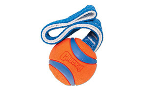 Chuckit! Ultra Tug Toys For Dogs