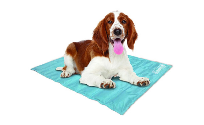 Coleman Pressure Activated Comfort Cooling Gel Dog Pad
