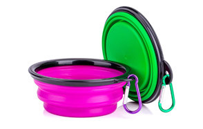 Collapsible Dog Bowl by COMSUN
