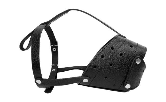 CollarDirect Basket Dog Muzzle