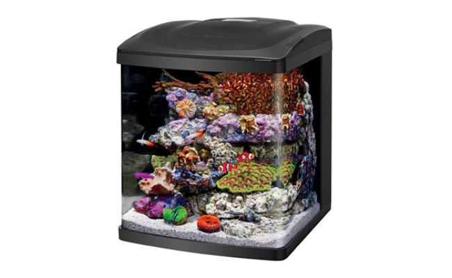 Coralife Small Saltwater Tank