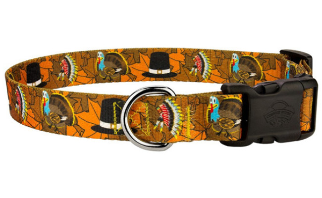 Country Brook Design Thanksgiving Tradition Dog Collar