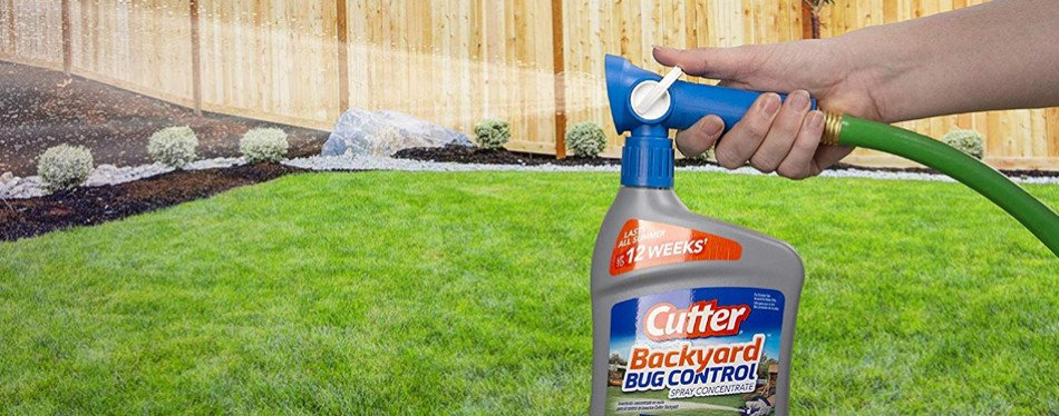 The Best Flea Killer For Your Yard (Review) in 2019