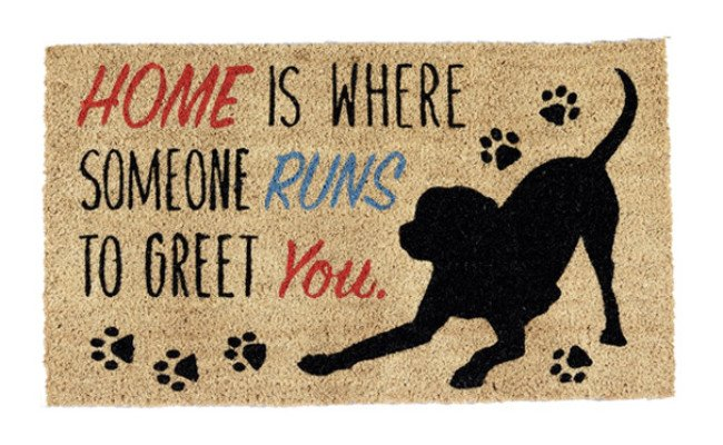 DII Natural Outdoor Doormat for Dogs