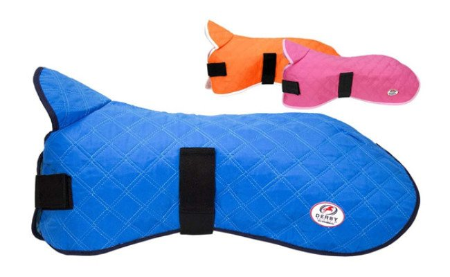 Derby Originals Hydro Cooling Jacket for Dogs