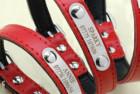 Didog Leather Custom Collar