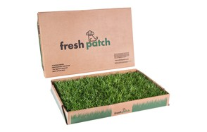 Disposable Dog Potty with Real Grass by Fresh Patch