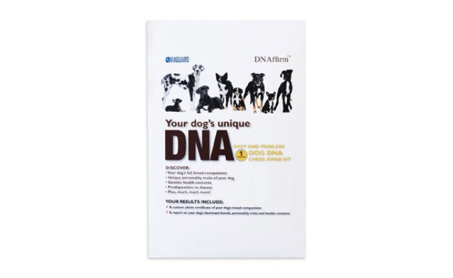 Dog DNA Canine Breed Identification Test