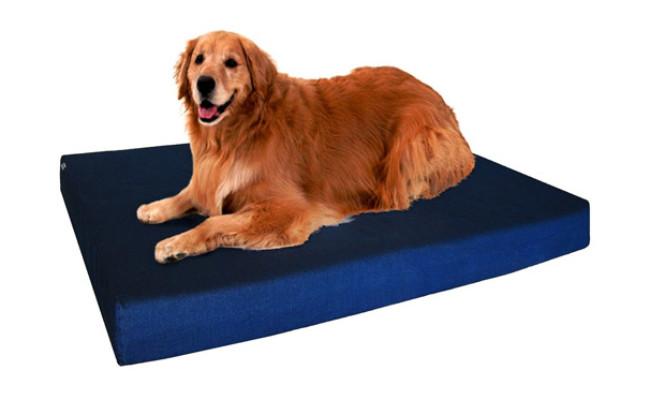 Dogbed4less Orthopedic Indestructible Dog Bed