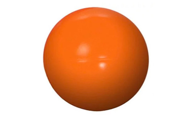 Doggie Dooley Virtually Indestructible Dog Herding Ball
