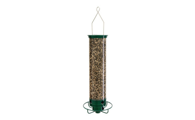 Droll Yankees Squirrel Proof Bird Feeder
