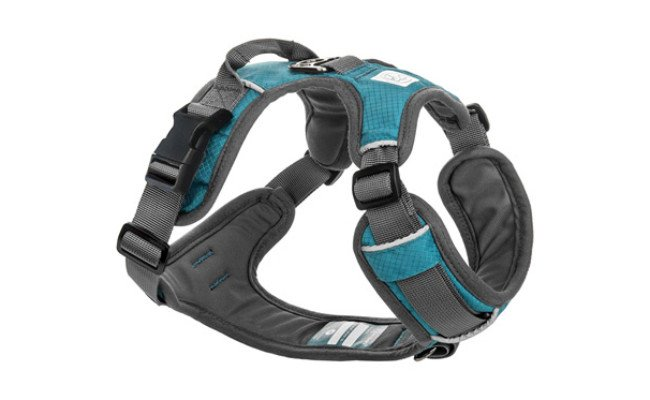 Embark Pets Dog Running Harness