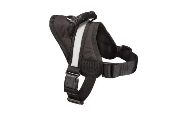 Expawlorer Dog Harness for Stress-Free Walking