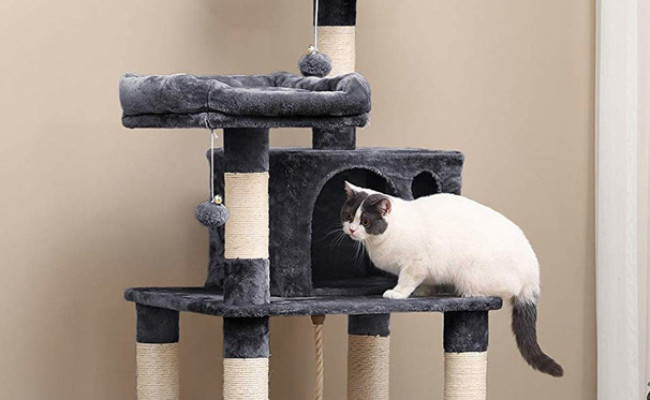 Feandre Cat Condo with Scratching Posts