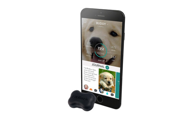 FitBark Water Resistant Dog Activity & Sleep Monitor
