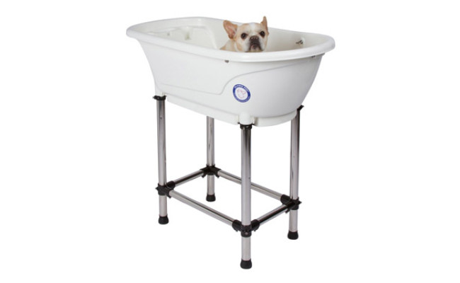 Flying Pig Grooming Bath Tub for Dogs
