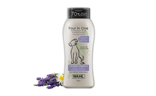 Four in One Dog Shampoo & Conditioner