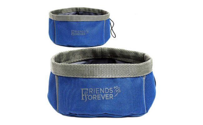 Friends Forever Collapsible Dog Bowl