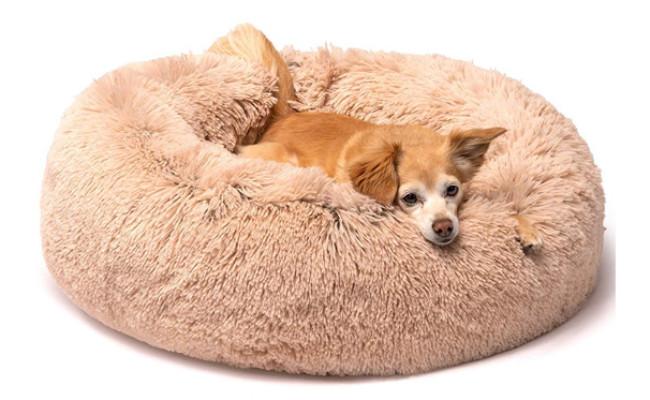 Friends Forever Donut Dog Bed