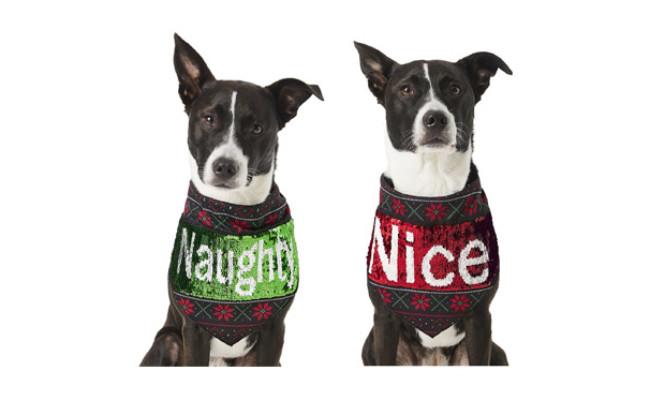 Frisco Flip Sequin Naughty-Nice Dog Bandana