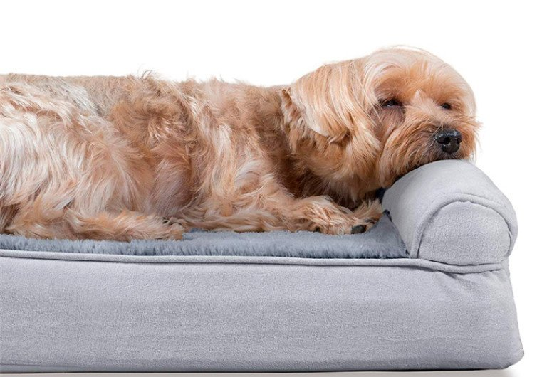 Furhaven Orthopedic Dog Bed
